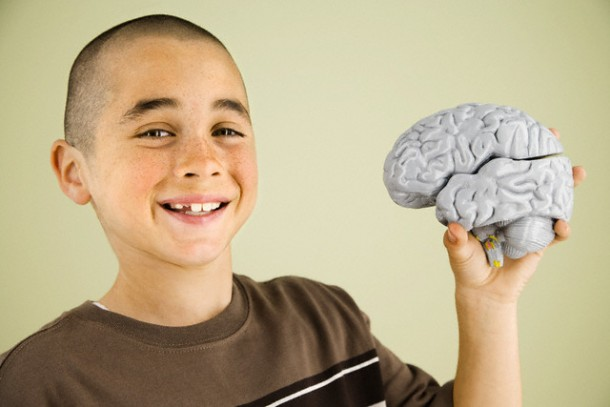 Boy holding human brain model --- Image by © Hill Street Studios/Tetra Images/Corbis